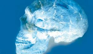 Chapter 10. Human fossils: bones of ape bones?